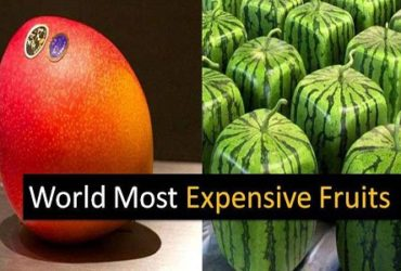 Check 6 Expensive Fruits Earth