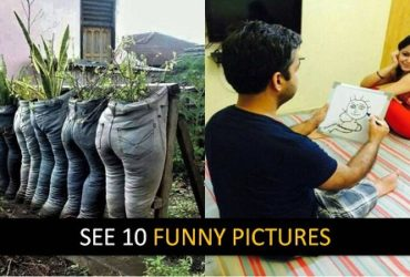 See Funny Pictures Guarantee Stop Laughing